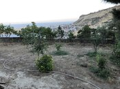 Torpaq - Badamdar q. - 4.5 sot (8)