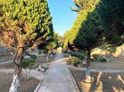 Bağ - Mərdəkan q. - 220 m² (37)