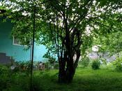 3 otaqlı ev / villa - Qəbələ - 100 m² (4)