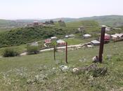 Участок - Шемаха - 12 сот (5)