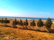 Torpaq - Novxanı q. - 34 sot (9)