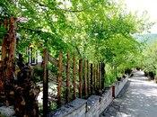 17 otaqlı ev / villa - Quba - 650 m² (8)