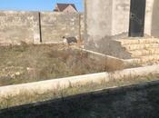 Bağ - Nardaran q. - 80 m² (11)