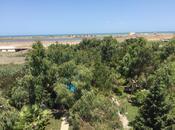 Bağ - Mərdəkan q. - 300 m² (13)