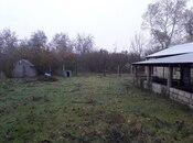 Obyekt - Qəbələ - 10000 m² (3)