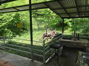 3 otaqlı ev / villa - Qəbələ - 90 m² (5)